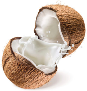 Coconut MCT Boost